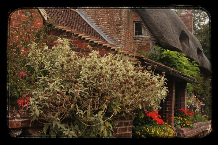 Chawton-Hampshire-cottage
