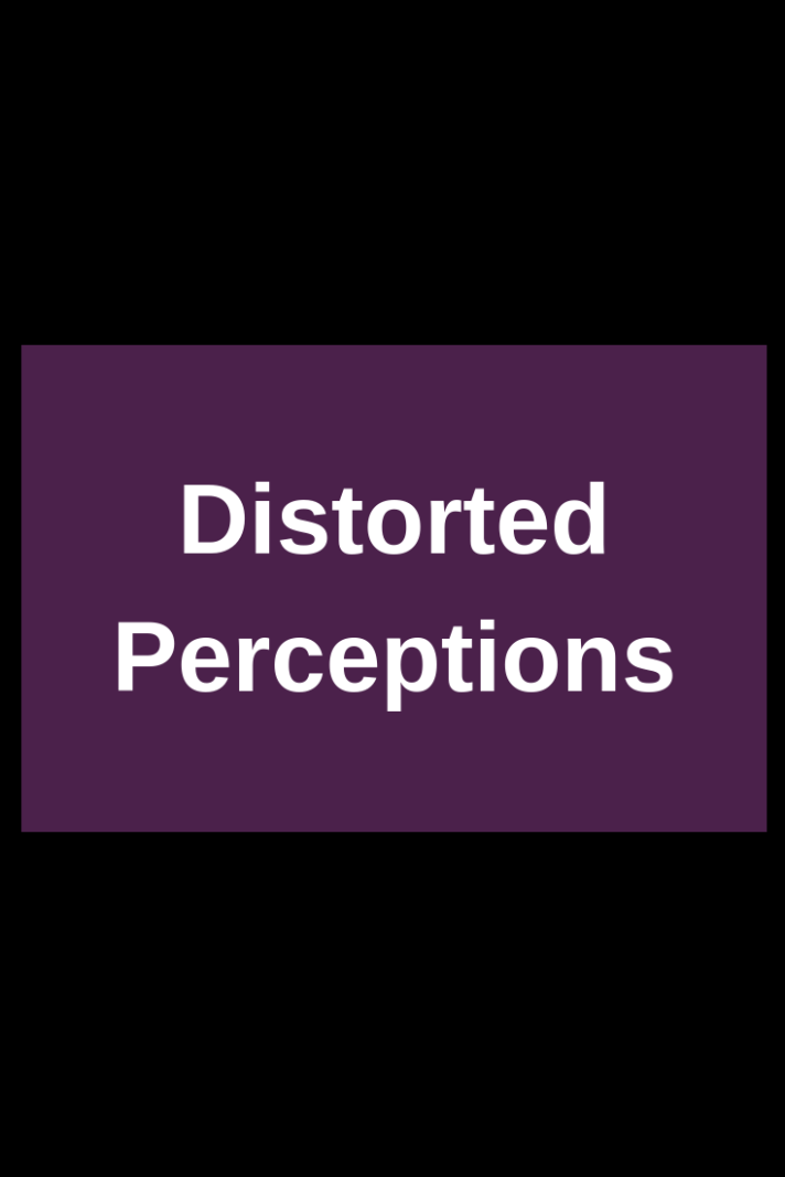 distorted-perceptions-about-novel